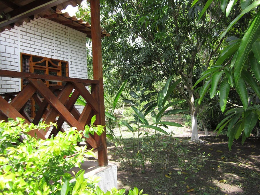 Lateral exterior de cabaña en Viotá